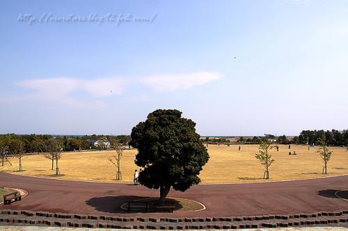 吉田公園201103