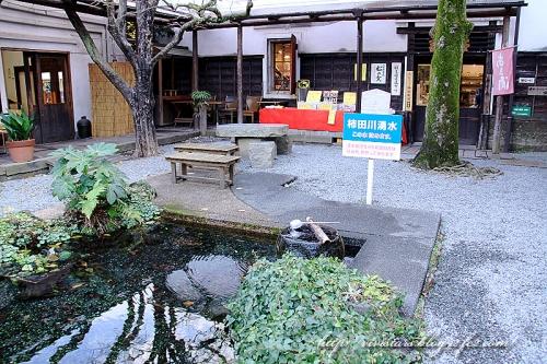 柿田川06