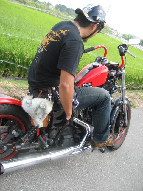 011_20121006094536.jpg