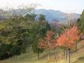2013.11.21三重5