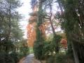 2013.11.22三重・滋賀6