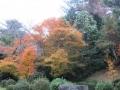 2013.11.22三重・滋賀9