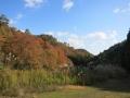 2013.11.25兵庫