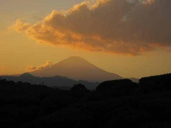 2013.11.26静岡・神奈川3