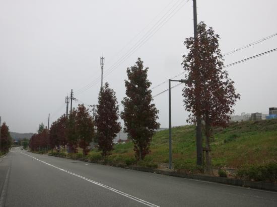 2014.10.20兵庫1