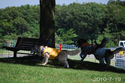 2010-7-19hima3.jpg