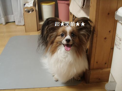 2010-7-21blog1_20100721220401.jpg