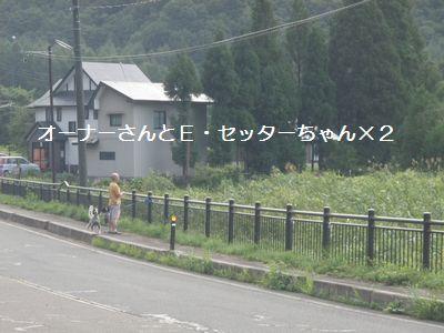 2010-8-13(6).jpg