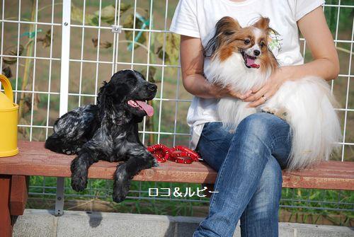 2010-8-7blog4.jpg