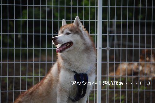 2010-8-7blog7.jpg