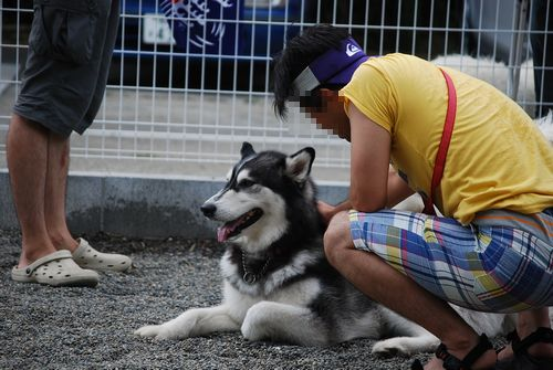 2010-8-7blog8.jpg