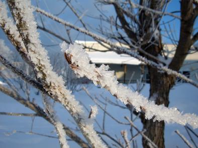 H23樹氷ブログ4