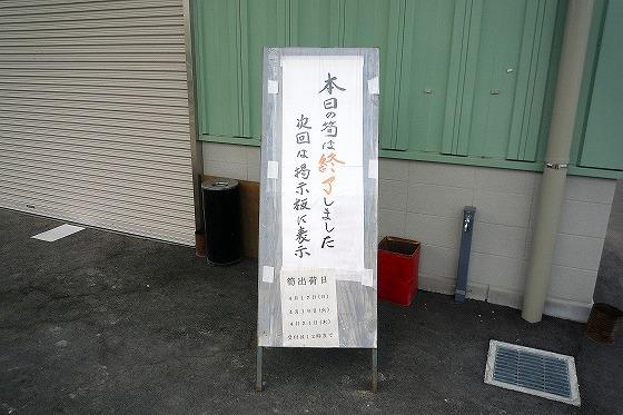 P1110646.jpg