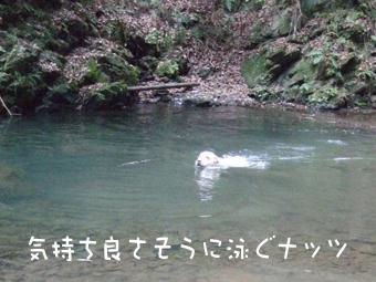 DSCF8856.jpg