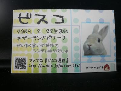 P1260084_convert_20120301180730.jpg
