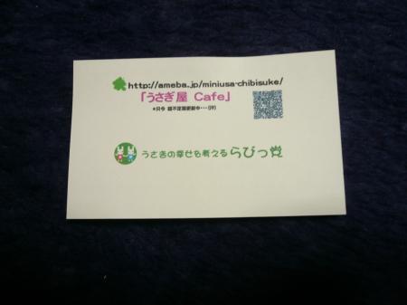 P1270156_convert_20121201232025.jpg