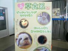 snap_wankosyoukai_2012122213113.jpg