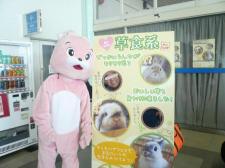 snap_wankosyoukai_2012124131549.jpg