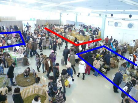 snap_wankosyoukai_2012124161034.jpg