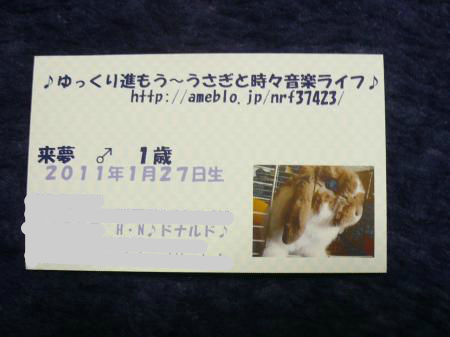 snap_wankosyoukai_2012126231858.jpg