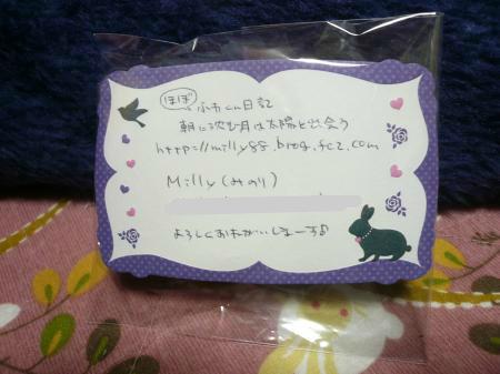 snap_wankosyoukai_2012126233245.jpg