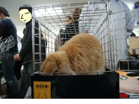 snap_wankosyoukai_201223153511.jpg