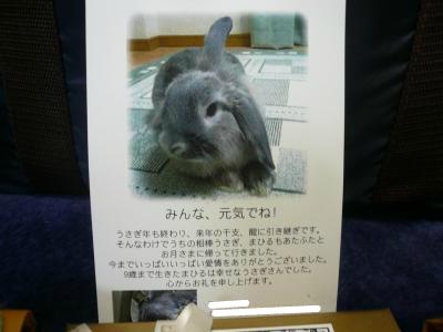 snap_wankosyoukai_201230212136.jpg