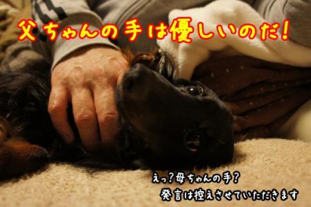 父ちゃんの手