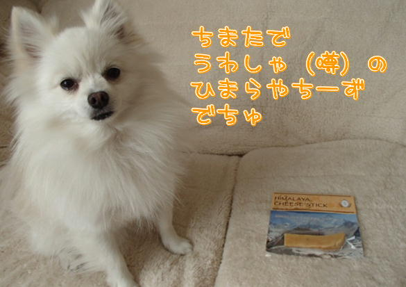 14_20131211075736c84.jpg