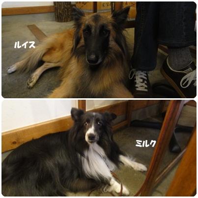 10-29-2b.jpg