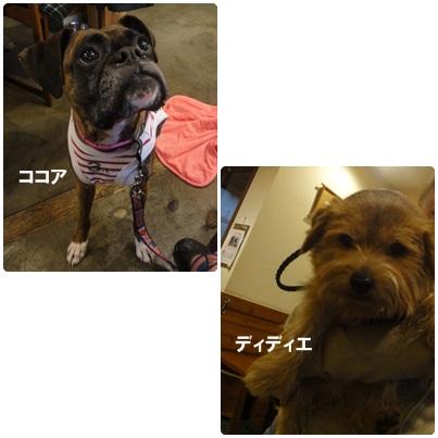 3-2-5a.jpg
