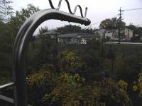 雨20101122-1