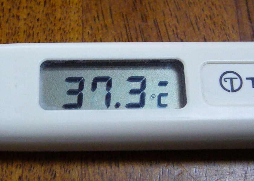 微熱 の 37 度