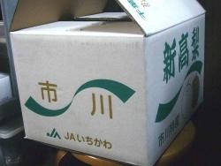 新高梨1箱