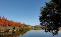 鏡山公園20101124-2