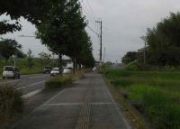 散歩20100727-3