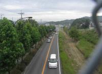 散歩20100728-5