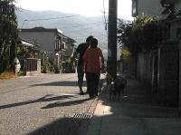 散歩20100826-22