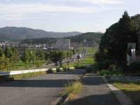 散歩20100828-2