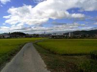 散歩20100923-4