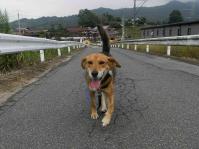 散歩20100930-5