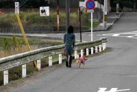 散歩20101029-5
