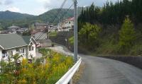 散歩20111024-1