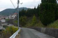 散歩20111025-1