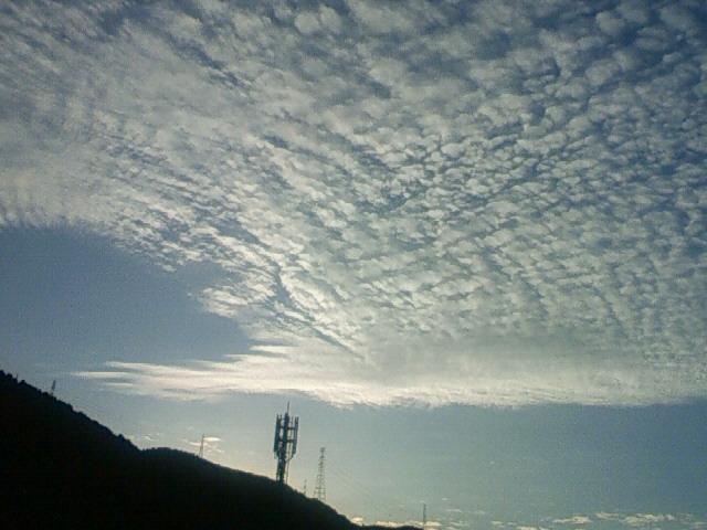 201210020631001.jpg