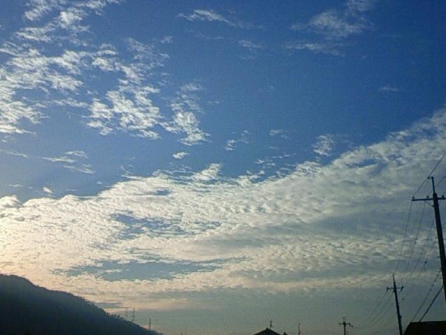 201210140711000.jpg