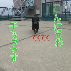 1_20110529170007.jpg