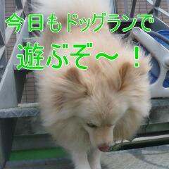 2_20110518183837.jpg
