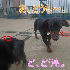 2_20110529170006.jpg