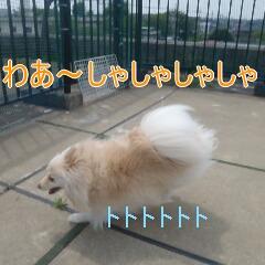 3_20110518183836.jpg